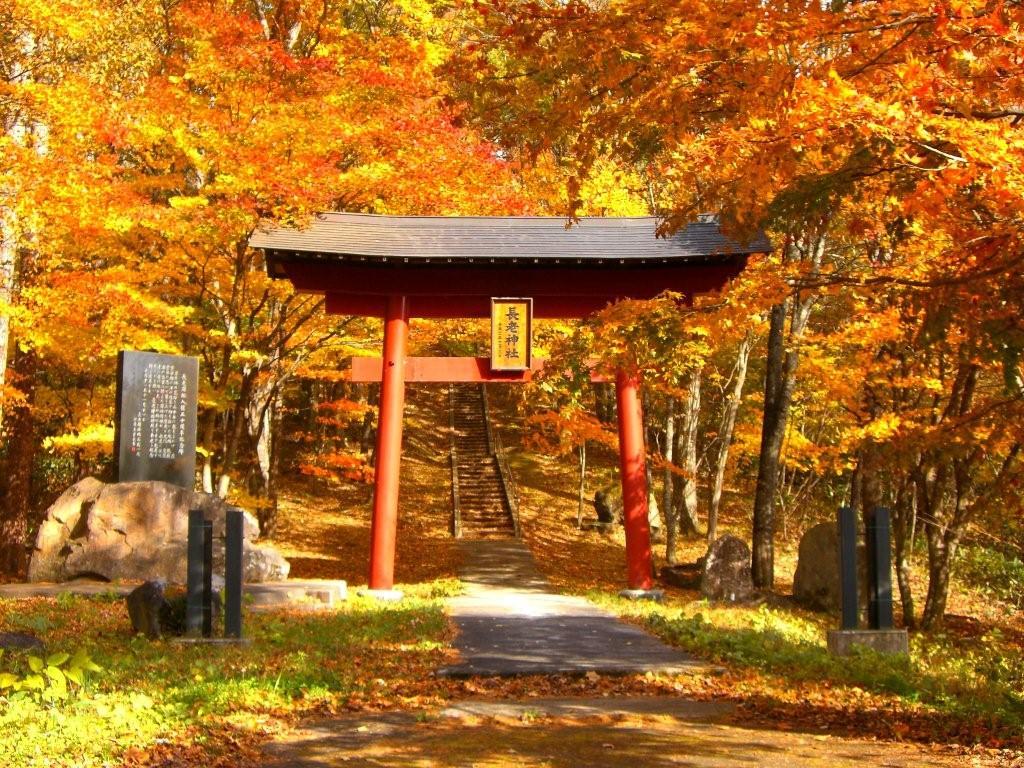 宮城県神社